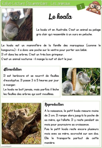 thumbnail of Rallye-lecture-documentaire-Animaux-LB